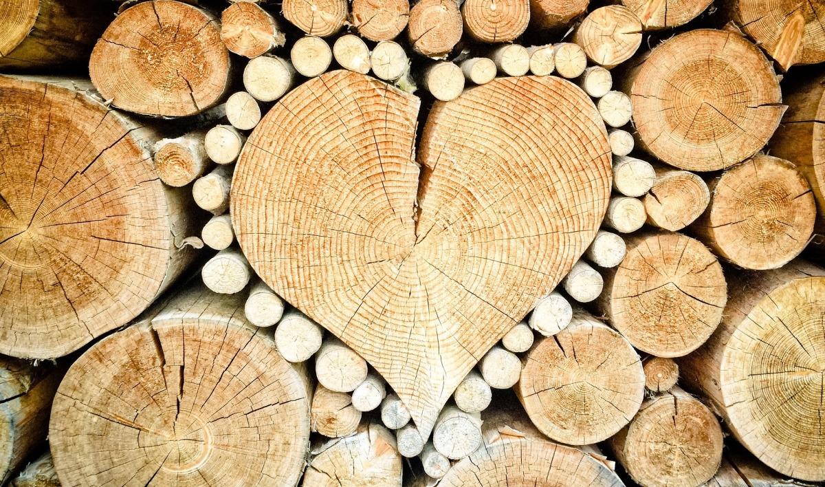 La legna da ardere inquina per davvero? [forse non tutti sanno che...]